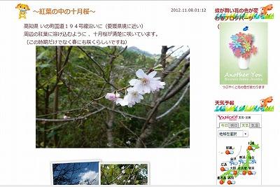 ブログ画像.jpg