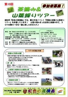 茶摘み&山菜採りツアー(越知町).jpg